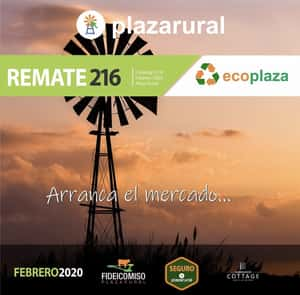 Remate 216˚ Remate Plaza Rural