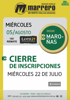 155˚ Remate Lote21