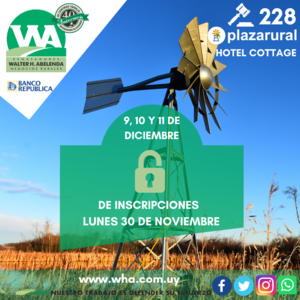 228˚ Remate Plaza Rural