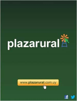 229˚ Remate Plaza Rural