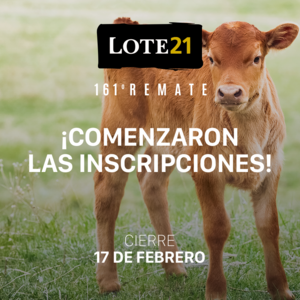 161° REMATE Lote 21