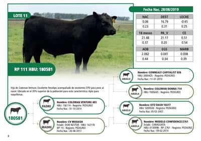 Lote RP 111