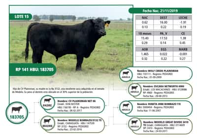 Lote RP 141