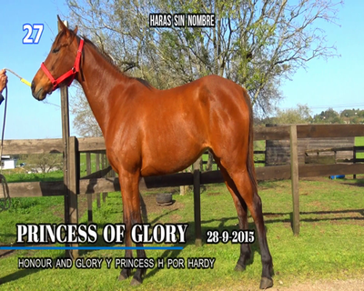 Lote PRINCESS OF GLORY