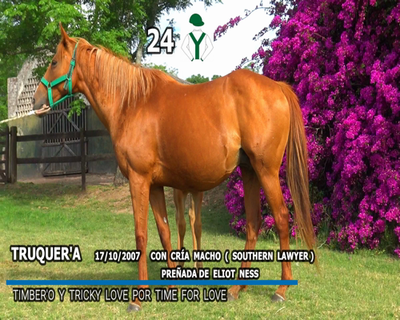 Lote TRUQUER'A