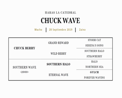 CHUCK WAVE (CHUCK BERRY - SOUTHERN WAVE)