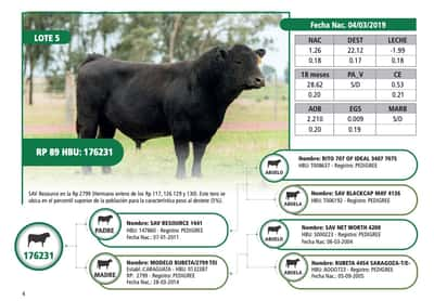 Lote RP 89
