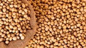 Demanda externa pela soja brasileira segue firme, principalmente por parte da China