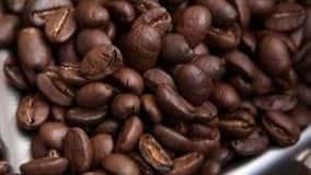 CNA e o portal CaféPoint concluíram uma pesquisa com cafeicultores das principais regiões produtoras do país para saber o desempenho da safra em 2018