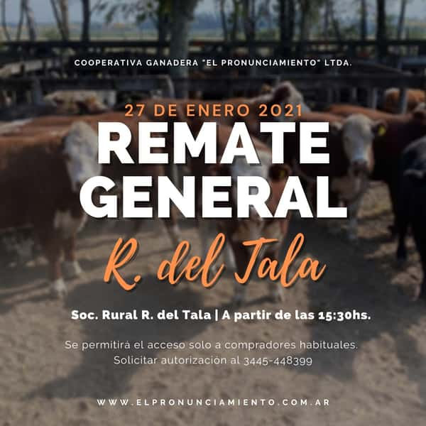 Remate Remate General