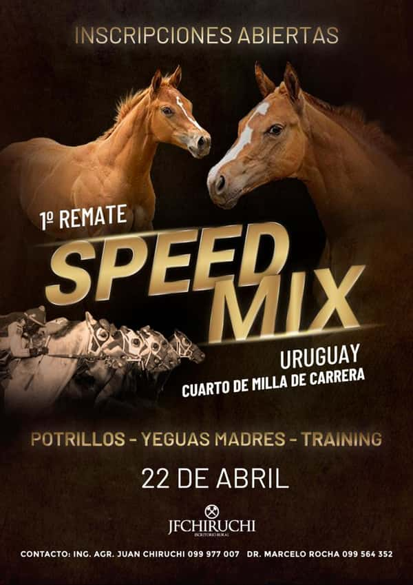 Remate 1º REMATE SPEED MIX